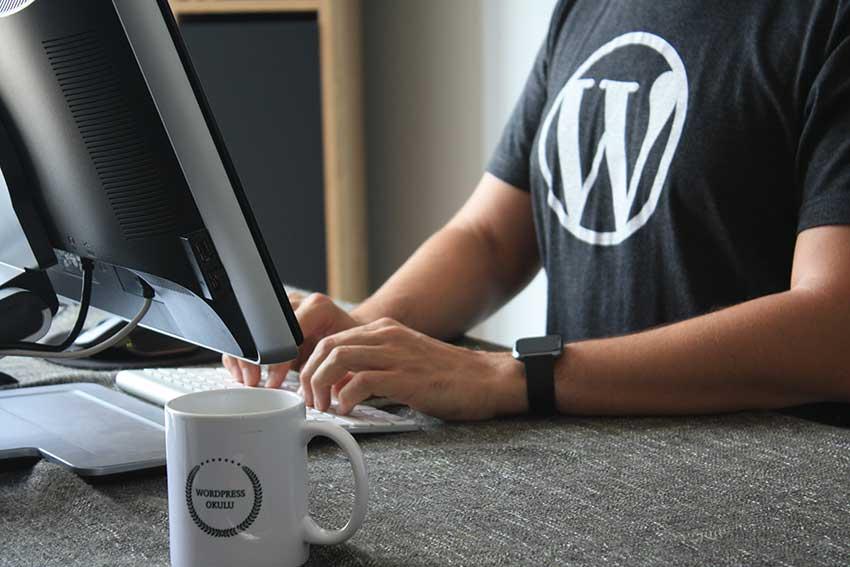 WordPress and Search Engine Optimization (SEO)