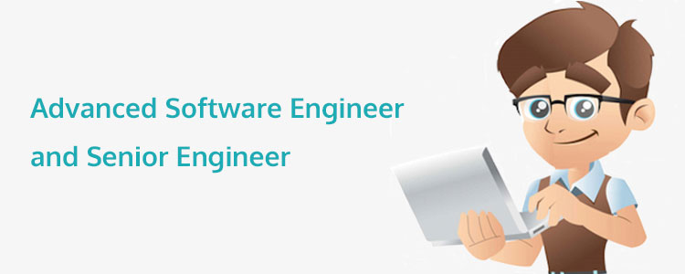 Career Stages in Programming: The Roles of Advanced Software Engineer and Senior Engineer