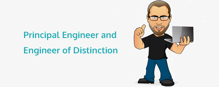 Career Stages in Programming: The Roles of Principal Engineer and Engineer of Distinction