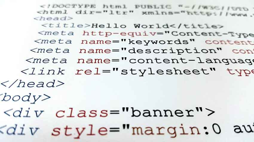 HTML is the backbone and the most rudimentary aspect of a website, and every developer should be fluent in this